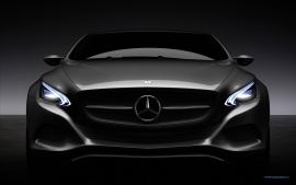 2010 Mercedes Benz F800 Style Concept