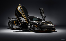 2016 McLaren 570S GT4 (click to view)