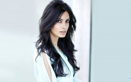Diana Penty Bollywoood Girl Latest New Hd Wallpaper