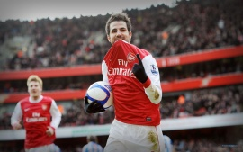 Fabregas Arsenal
