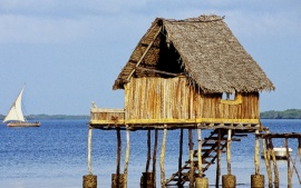 Kipungani Lodge near the village of Kipungani. Lamu Island. Indian Ocean Coast. Kenya (click to view)