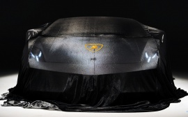 Lamborghini Black in cover