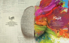 Left Brain & Right Brain infographic