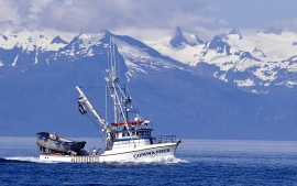 Purse Seiner on Chatham Strait, Alaska