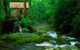 Reagan Mill, Roaring Fork, Great Smoky Mountains National Park, Tennessee