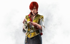 the witcher 3 wild hunt shani